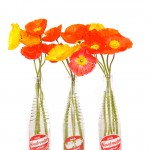 soda stand flowers
